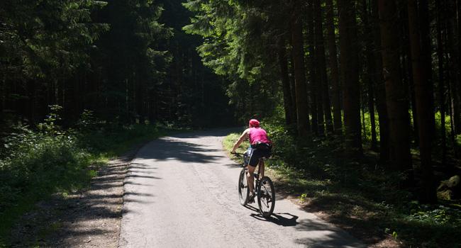 Mountain-Biker auf dem sonnigen Weg hoch zum Almbad Huberspitz