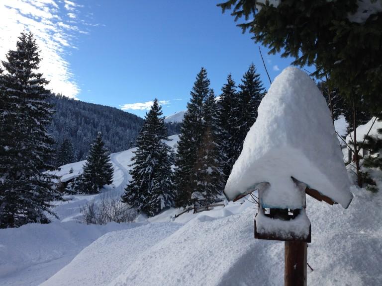 Im Winter: Das Vogel-Sillberghaus mit Schneemütze (Foto: almbad.de)