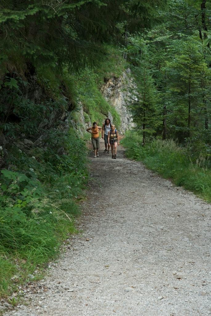Wanderer auf dem Weg zum Sillberghaus