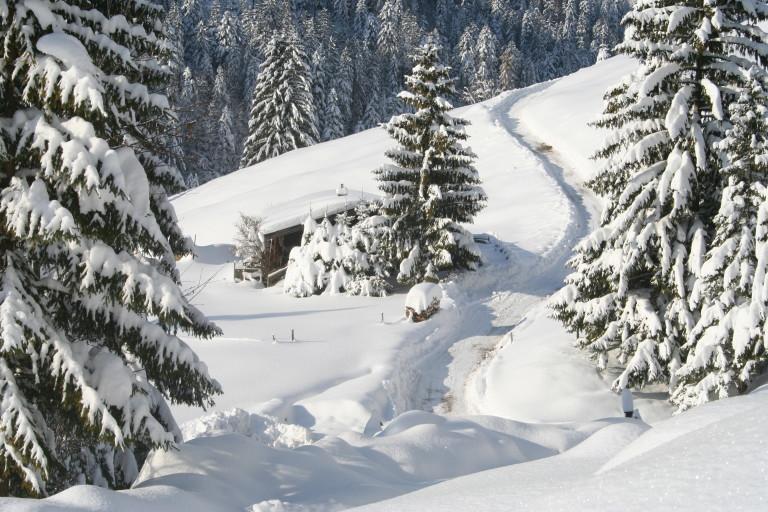 Winter Wonderland am Almbad Sillberghaus (Foto: almbad.de)