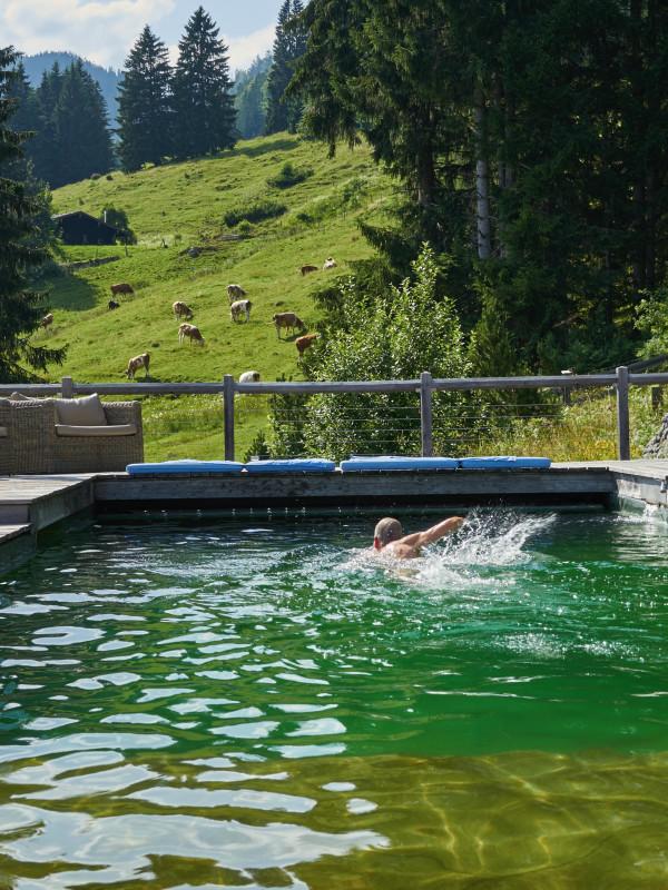 Gast des Almbad Sillberghaus schwimmt im Natur-Pool inmitten des Almgebiets