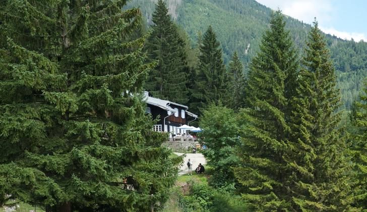 Das Almbad Sillberghaus aus der Ferne, zwischen den Bäumen und Wäldern des Ursprungtals