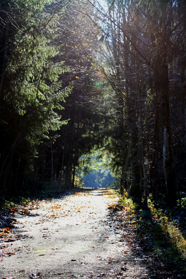 Traumhafter Wanderweg zum Almbad Huberspitz