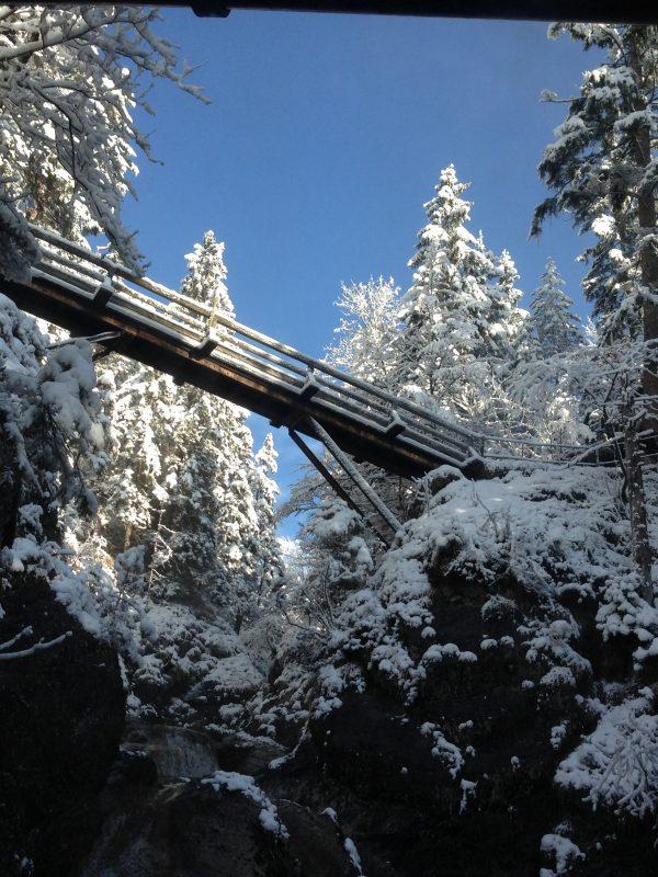 Die Brücke des Wendelstein-Männlein-Wegs durch Bayrischzell mit Blick zum Dorfbad Tannermühl