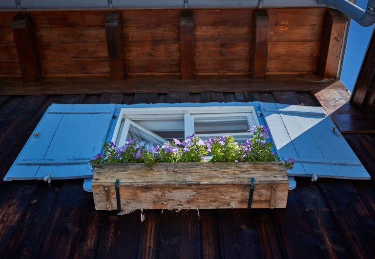 Fenster mit Blumenkasten und blauen Fensterläden des Almbad Sillberghaus