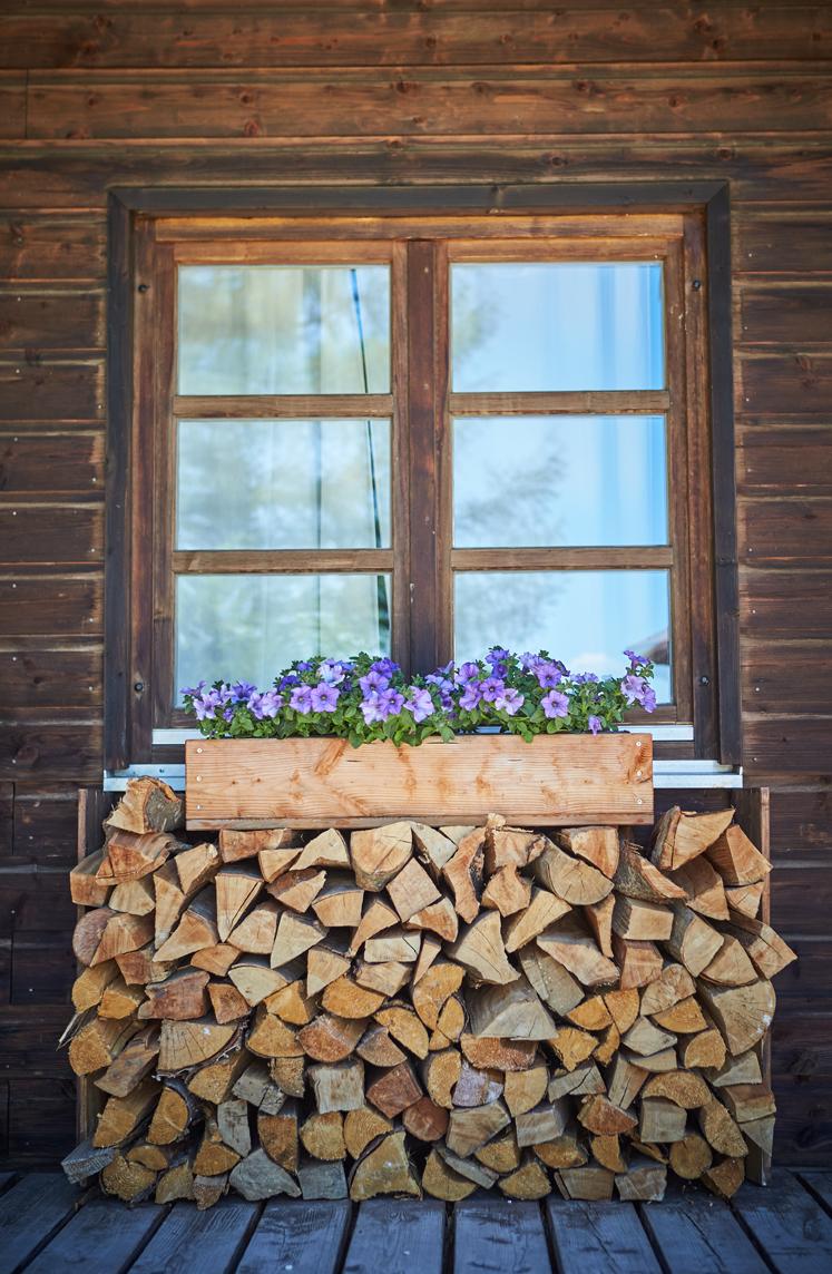 Fenster in holzvertäfelter Wand, davor aufgeschichtetes Stückholz mit lila blühenden Blumen