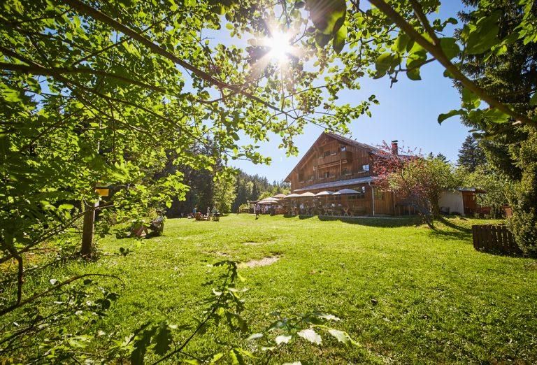 Im Sommer: Blick zur Sonne überm Almbad Huberspitz, rundherum das Grün der Almwiese und Bergwälder - ideal für Tagesgäste, Biker und Wanderer