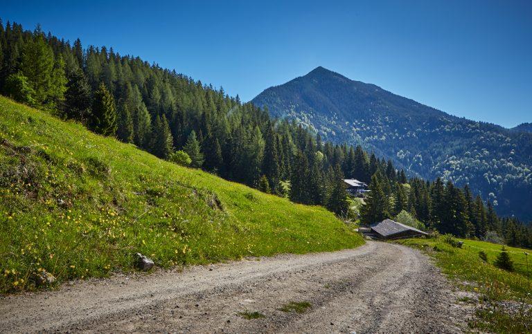 Des letzte Stückerl des Aufstiegs zur Hütte inmitten von Almwiesen mit Bergblick über das Ursprungtal